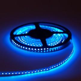 MEGALED LED STRIPE BLUE 5m 12V